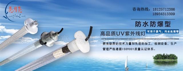 廣東亮月亮光電科技有限公司